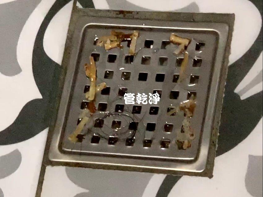 水管流出魷魚絲? 新北 淡水區 北新路 洗水管