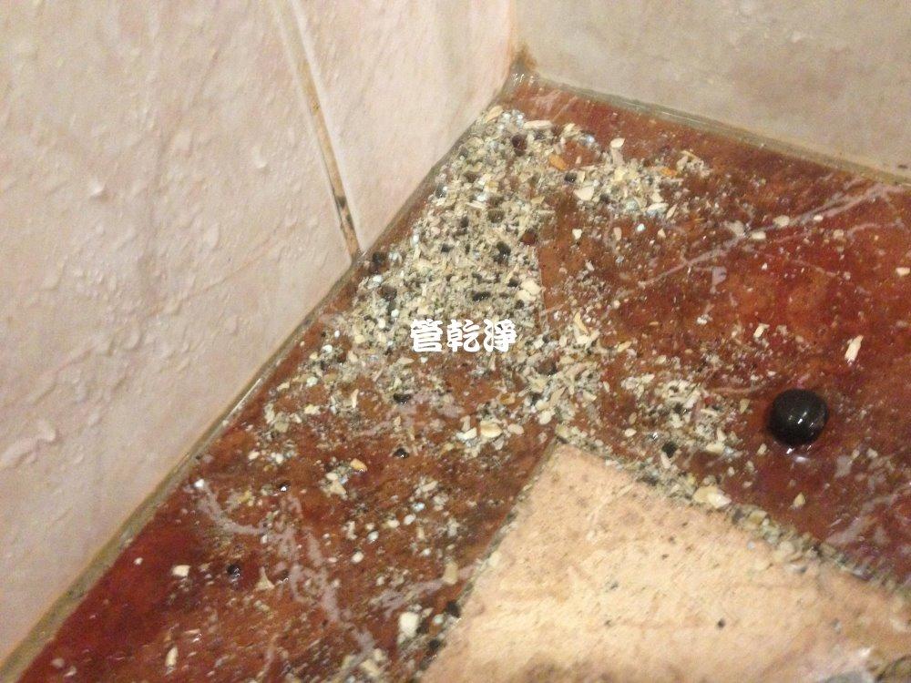 新竹 香山 中山路 洗水管